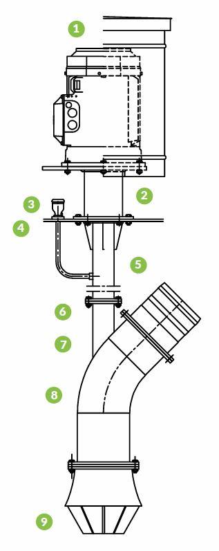 pengerryspumput-rakenne